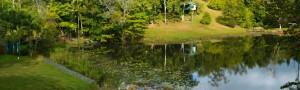 Lakeside Lawn